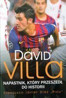 David Villa. The striker who made history