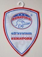 eD'System HK Senators Żdar on the Sazavou (ice hockey) pennant